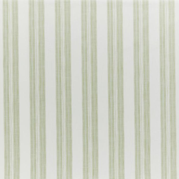 Barley Stripe Fennel