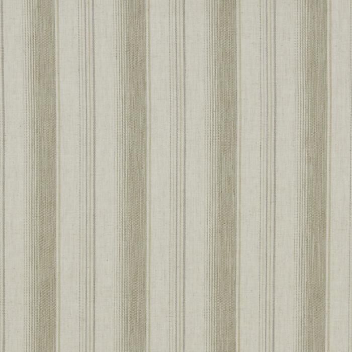 Sackville Stripe Fern