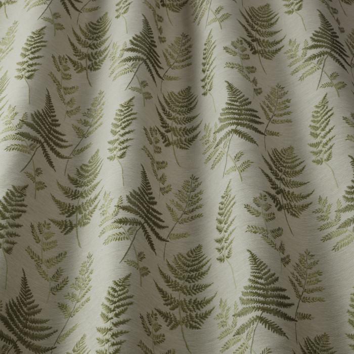 Ferns Willow