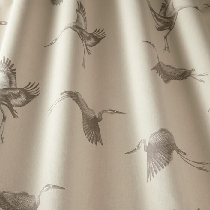 Cranes Pearl